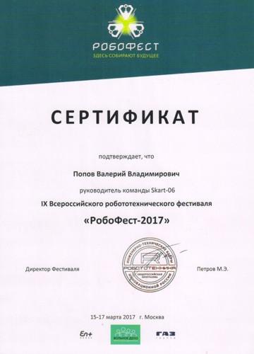 Сертификат руководителя команды на фестивале