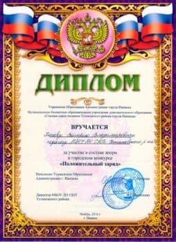 Диплом за участие в составе жюри конкурса Положительный заряд