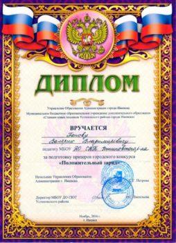Диплом за подготовку призеров конкурса Положительный заряд