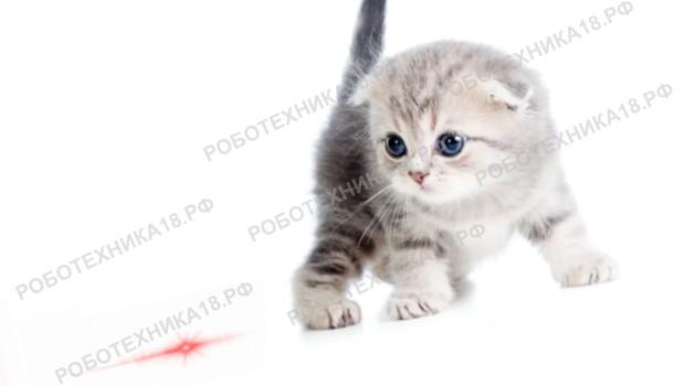 Интерактивная лазерная игрушка для котенка